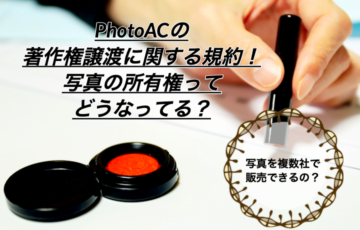 まとめ|PhotoACの著作権譲渡に関する規約!写真の所有権ってどうなってる?
