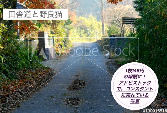 1枚148円の報酬に!アドビストックでコンスタントに売れている写真