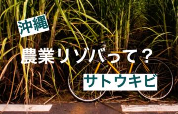 【リゾートバイトで農業】沖縄でサトウキビを収穫するリゾバとは?