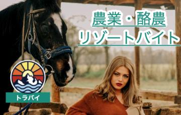【農業リゾートバイト】「トラバイ」で農業・牧場リゾバをする方法