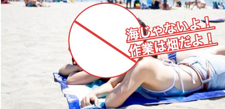 【農業バイトでは日焼け対策も】帽子・日焼け止め・虫除けも必須!