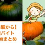 【実体験から】農業バイトの持ち物まとめ!